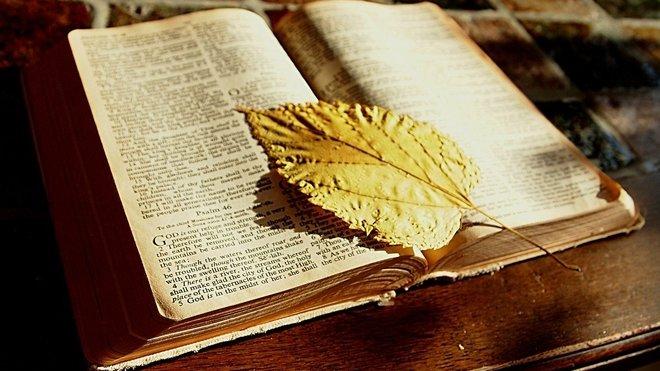 OBRÁZEK : bible-1166260_1280-1457202991-18a07d3e_660x371.jpg